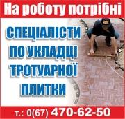 На роботу потрібні спеціалісти по укладці тротуарної плитки