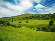 Продаж земельної ділянки в с. Яблуниця